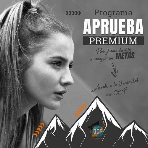 Programa acceso universidad española