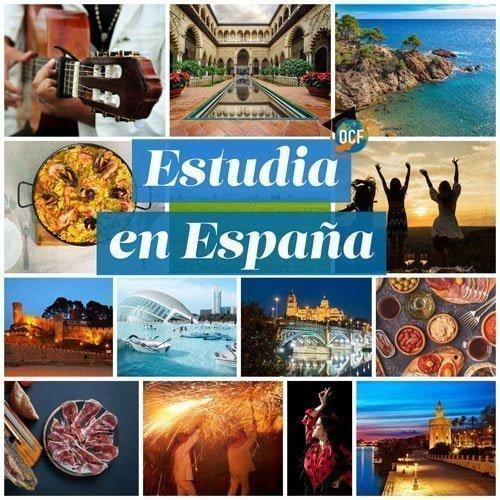 Expertos en el Acceso a la universidad española